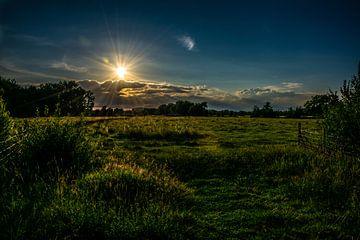 Landschap van Tim Moeremans