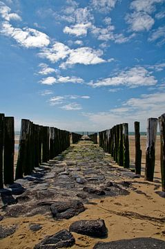 Brise-lames sans fin sur la plage de Zoutelande sur Thomas Poots