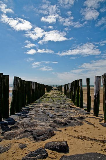 Eindeloze golfbrekers op het strand van Zoutelande van Thomas Poots