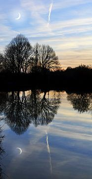 Bomen reflectie van Corinne Welp