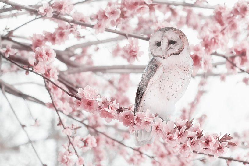 The spring blossom van Elianne van Turennout