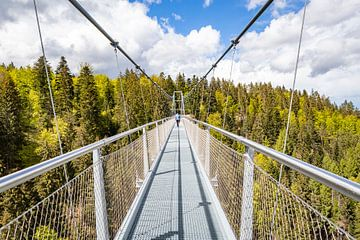 Prachtige WildLine brug door het Zwarte Woud in Duitsland