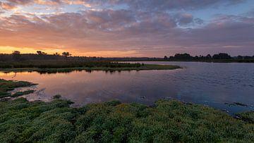 Strabrechtse Heide 242 von Desh amer