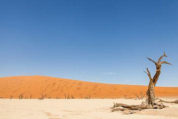 Verlaten landschap Deadvlei Namibië van Simone Janssen