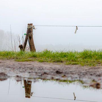 Weipaal in de mist sur Dion de Bakker