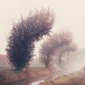 Hert in de morgen van Elianne van Turennout