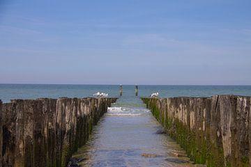 Symmetrie zwischen den Wellenbrechern und Blick auf die Nordsee von Marco Leeggangers