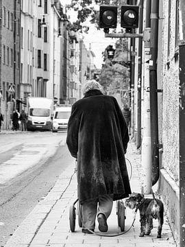 De oude vrouw met haar hondje van Arno Marx