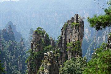 Majestueuze bergen van Jildau Schotanus
