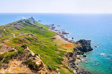 Corsica Sanguinaire eilanden van Els Van Geldre