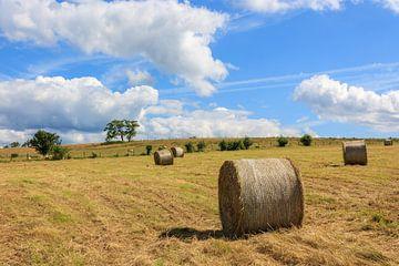 Hooirol in een Frans veld van Stephan Neven