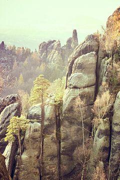 Felsformation in der Sächsischen Schweiz von Michael Moser
