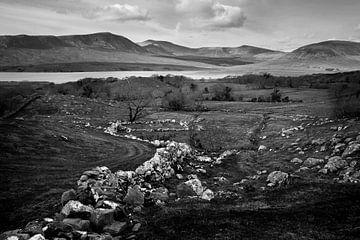 Irische Landschaft von Bo Scheeringa
