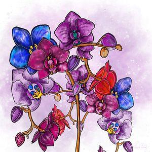 Blumenmotiv - Orchidee