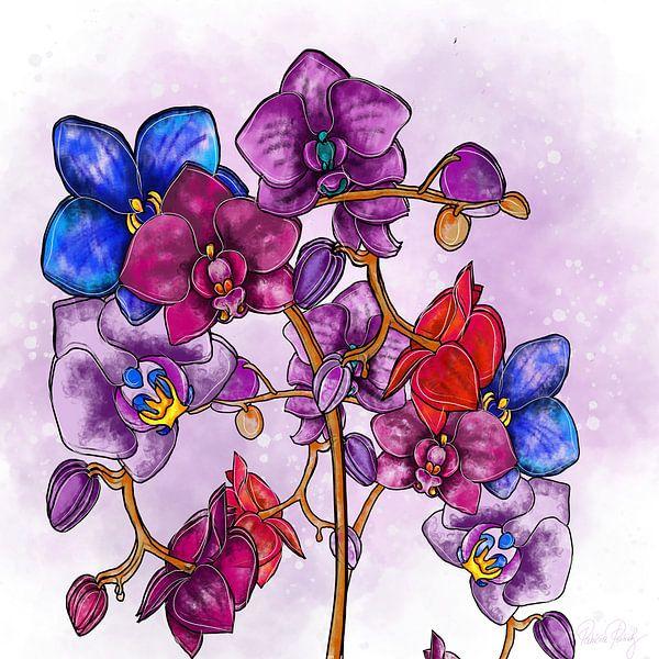 Blumenmotiv - Orchidee von Patricia Piotrak