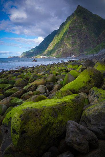 Groene rotsblokken aan het strand.
