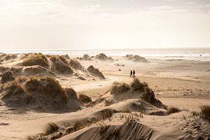 Duinen en strand van Rømø in Denemarken