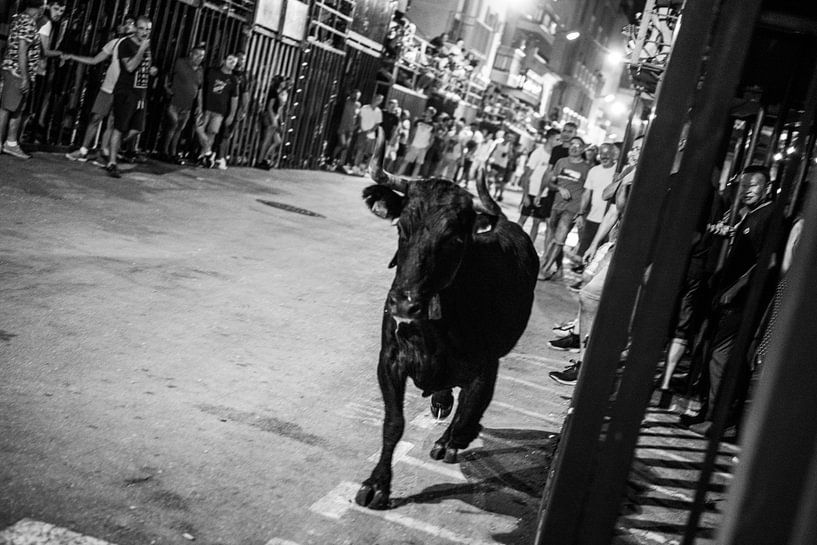 Stierengevecht van Arie-Jan Eelman