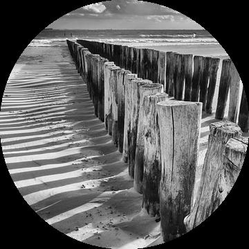 Paalhoofden in zwart-wit van Zeeland op Foto
