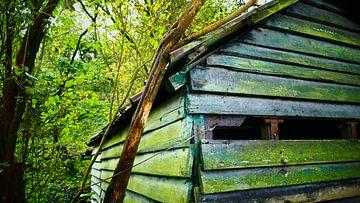 Verlaten hut in het bos van Susanne Begert