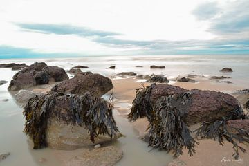 Zee van Normandie van ferdy visser