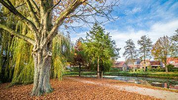 Koningspark in Herfstkleuren sur Thomas van der Willik