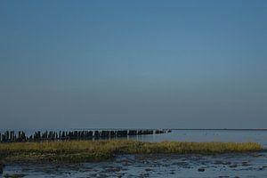 De Paezemerlânnen van By Foto Joukje