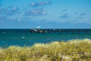 Baltic Sea coast with pier in Graal Mueritz