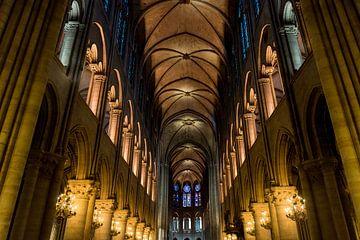 Die Schönheit von Notre-Dame von Damien Franscoise