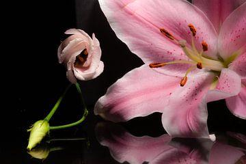Roze bloemen met weerspiegeling van Shadia Bellafkih