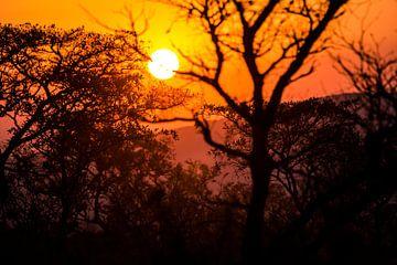 Zonsonderdang in Zuid-Afrika van Puck Bertens