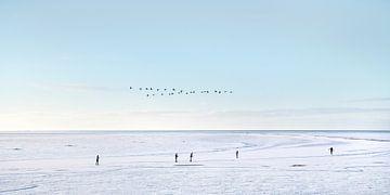 Winterlandschap  en schaatsers op het IJsselmeer nabij Gaast van Harrie Muis