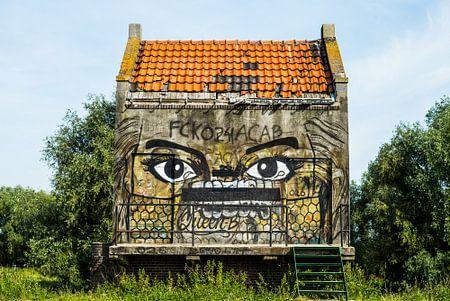 graffiti in the open van Alex van Doorn