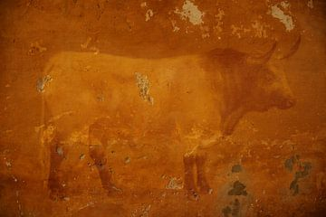 Fond d'écran Taureau je taureau sur Veerle Van den Langenbergh