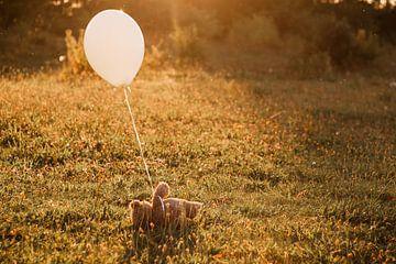 Verlassener Bär mit Luftballon von Marjolijn Maljaars