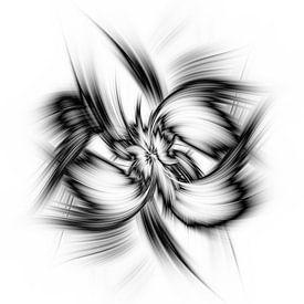 Twirl modern van Ingrid Van Damme fotografie