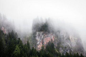 Mysteriöse Berglandschaft mit Nebel Österreich von Ger Beekes