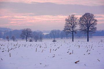 Ein nebliger Winterabend von Gisela Scheffbuch