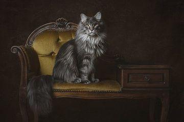 Vintage Fine Art portret Maine Coon kat van Nikki IJsendoorn
