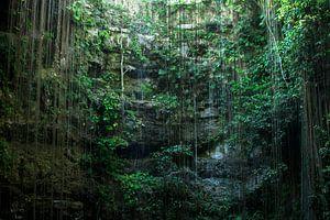 Cenote Mexico sur Robert Beekelaar