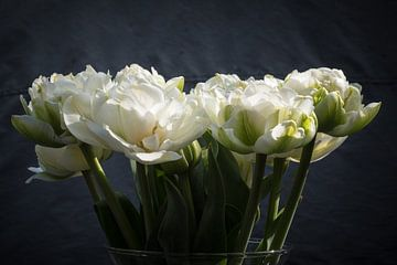 Blühende weiße Pfingstrosen-Tulpen auf der Vase von Idema Media