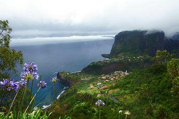 Faial, Madeira. von Michel van Kooten
