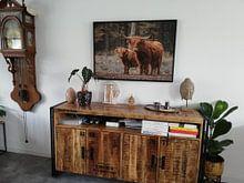 Klantfoto: Schotse Hooglander met kalf van Ans Bastiaanssen, op canvas