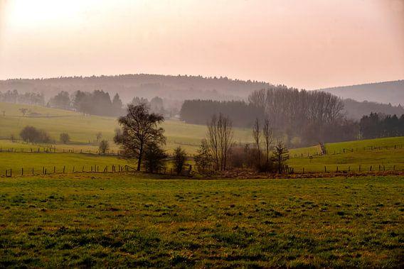 Der Herbst von Harald Schottner