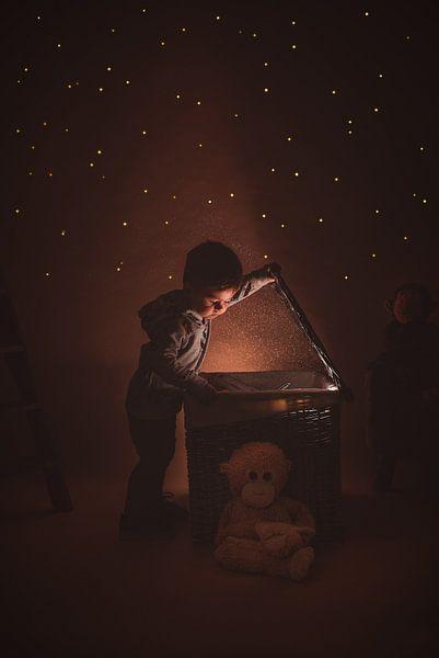 magischer Spielzeugkorb von Nick Weijsters