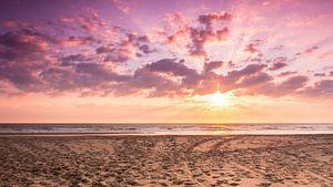 Dreamtime at the Beach