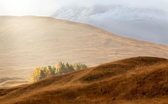 Catching the light, Schotland. van Guido Boogert