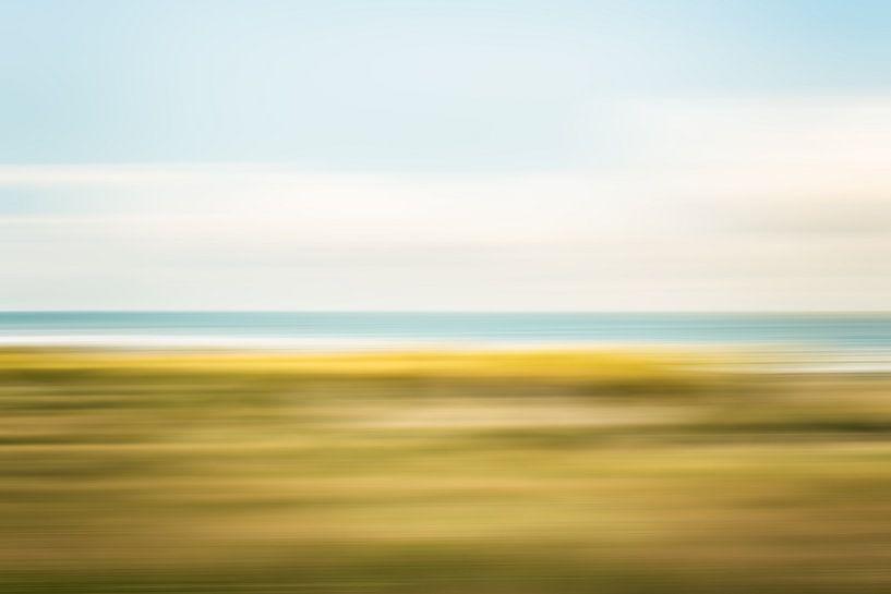 Helmgras in de duinen bij Scheveningen van MICHEL WETTSTEIN