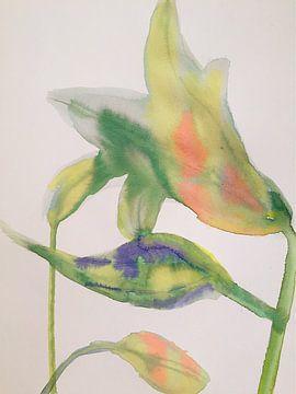 Pastel Lillies van Helia Tayebi Art