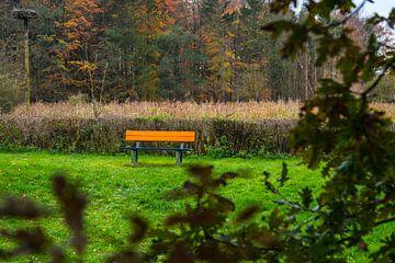 Die Couch im Wald. von Berend Kok